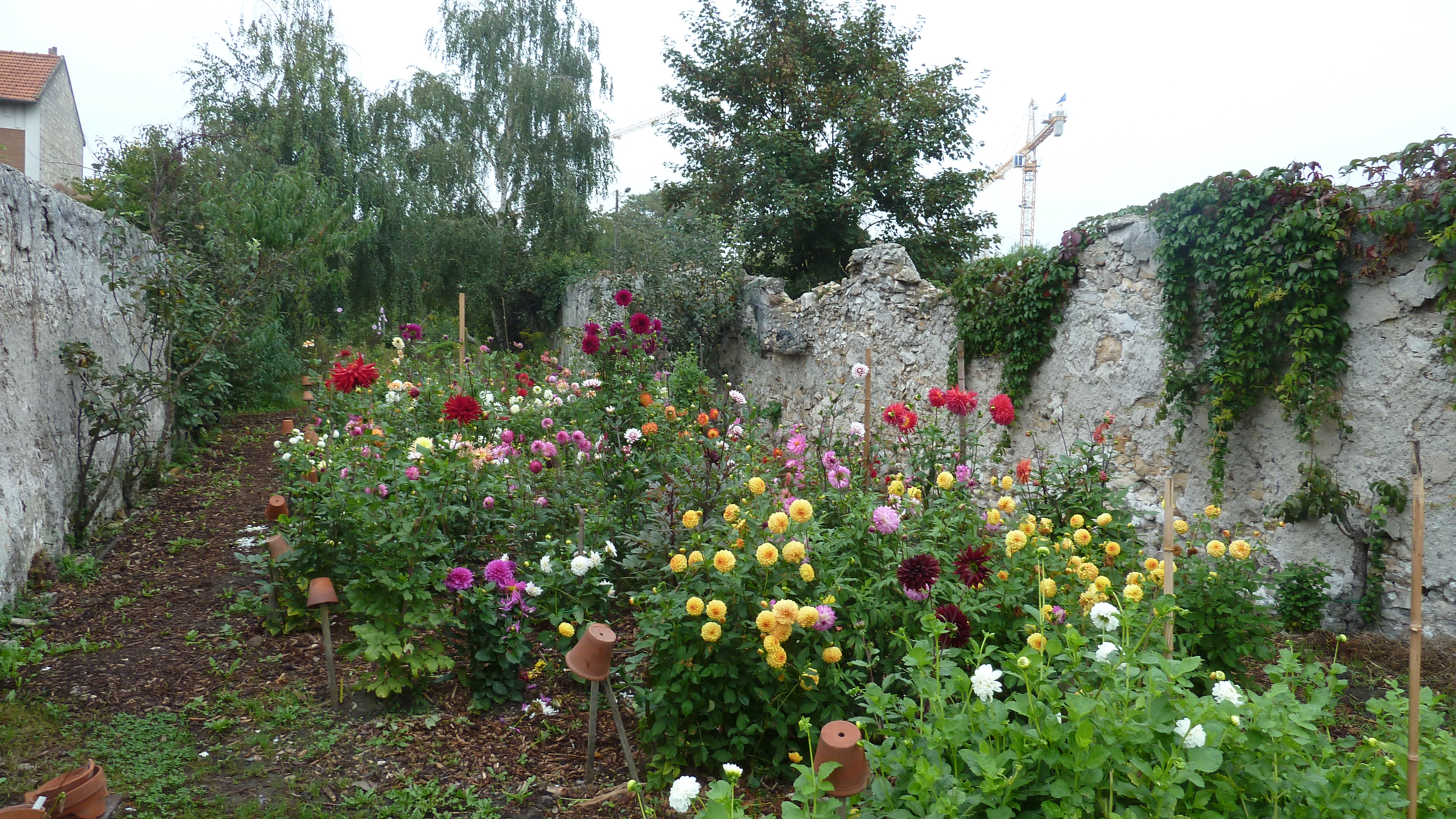 1er octobre au jardin pouplier le sens de l 39 humus for Jardin octobre